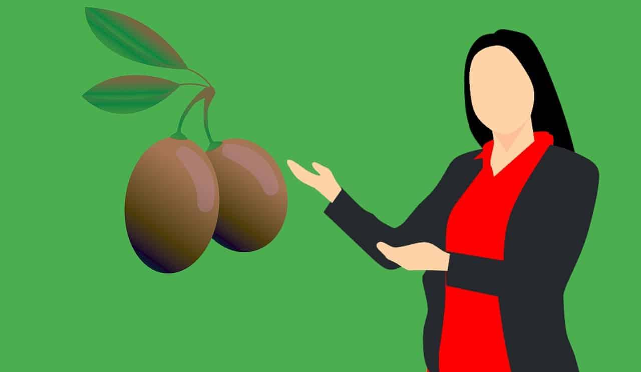 הסבר על הזית