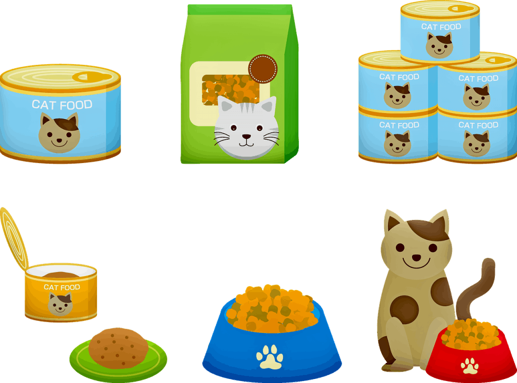 סוגים שונים של אוכל לחתולים