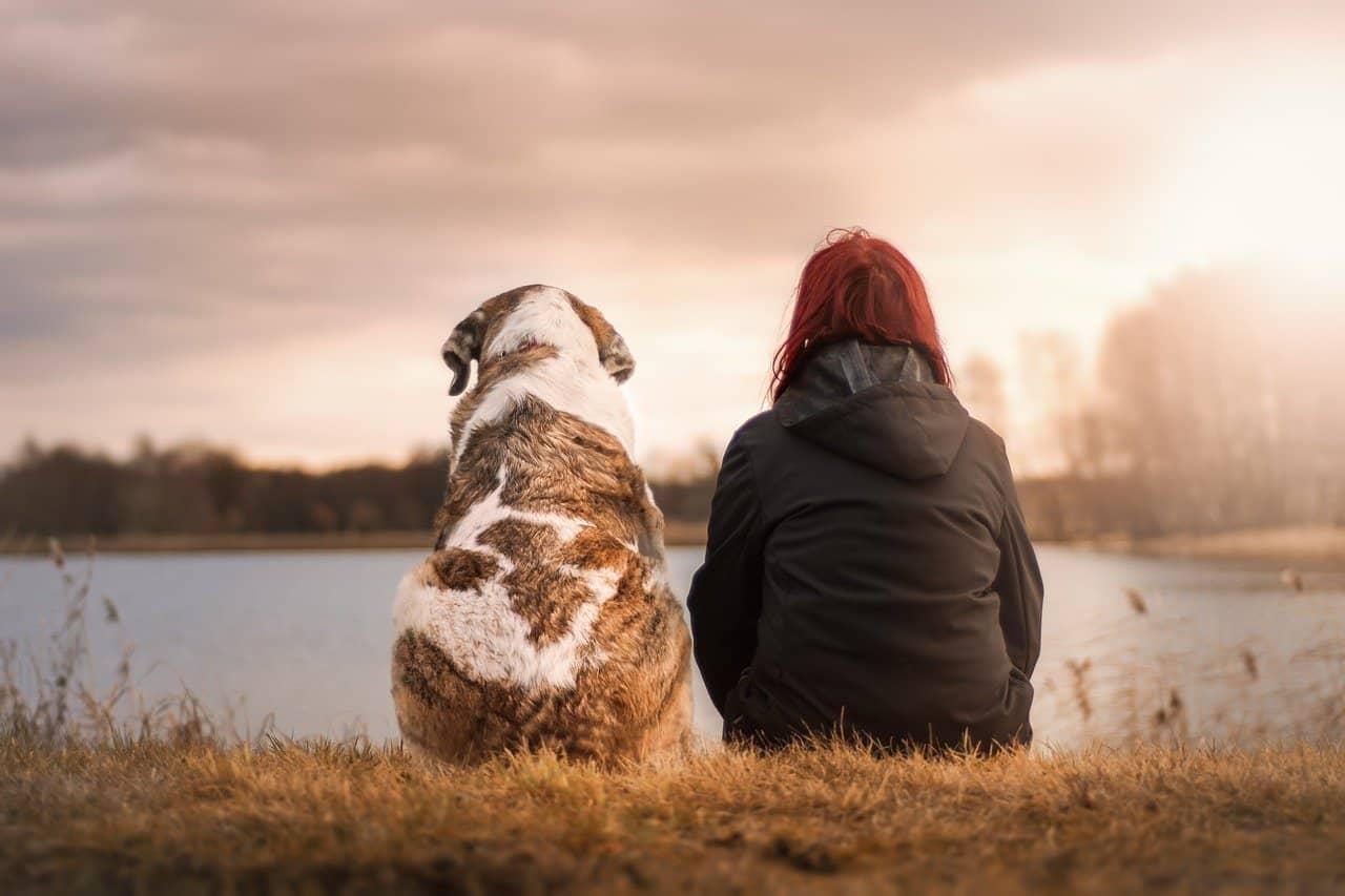 כלב ובעלים על גדות נהר